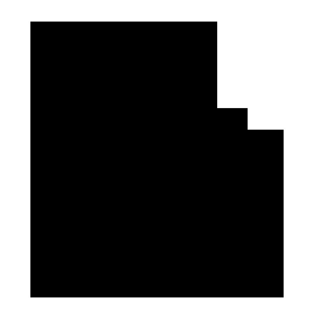 PRETO VAZADO