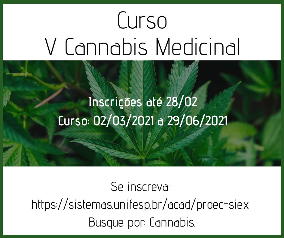 curso V cannabis medicinal